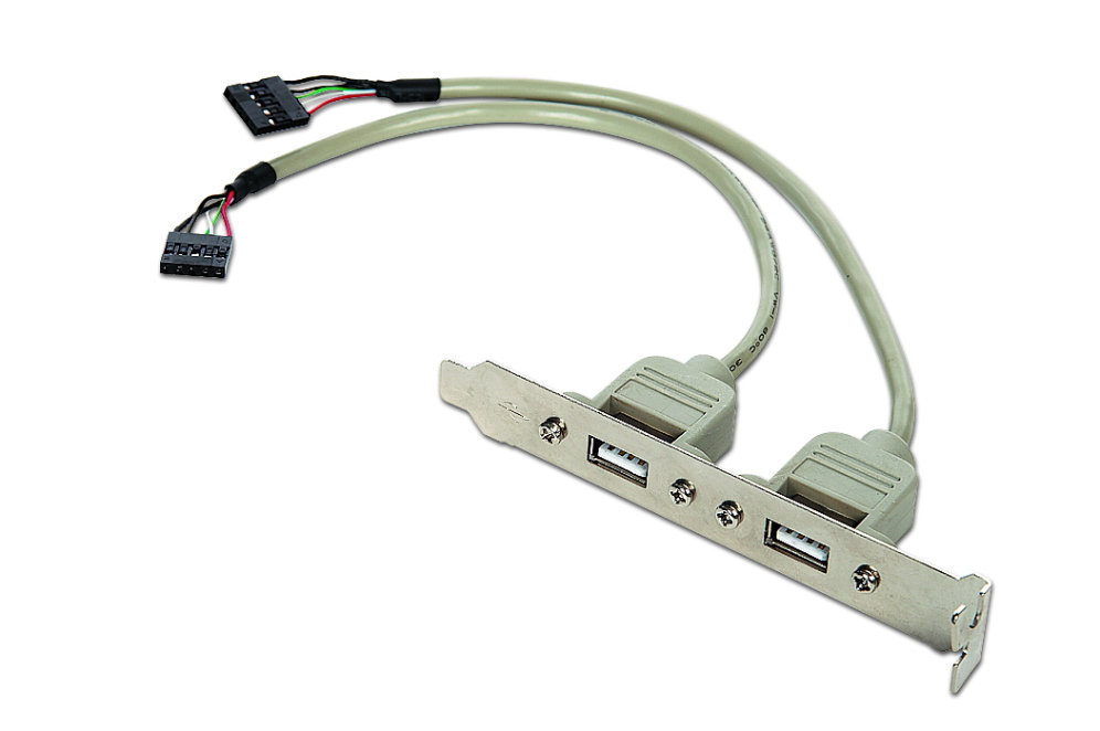Gembird CCUSBRECEPTACLE Adaptador 10pin a 2x USB 2.0