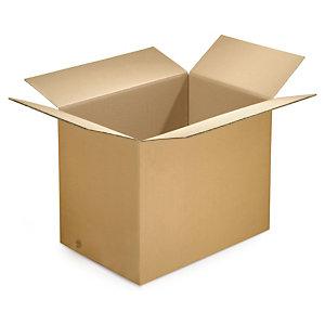 Caja de Carton 48x48x48 cm (Canal 5)